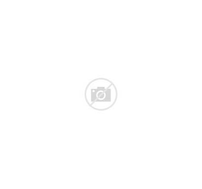 Aufbau Principle Hund Atomic 2d Electrons Rule