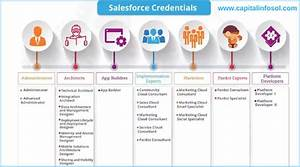 Salesforce Career Path For Beginners