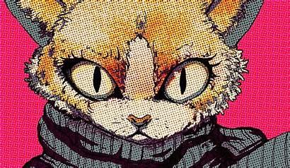 Pop Cat Wallpapers Desktop Background Backgrounds Amazing