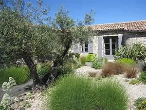 un jardin de charme sur lile de re With amenagement jardin avec piscine 14 albizia plantation taille et entretien