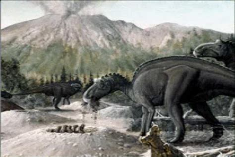 Maiasaura Pictures & Facts
