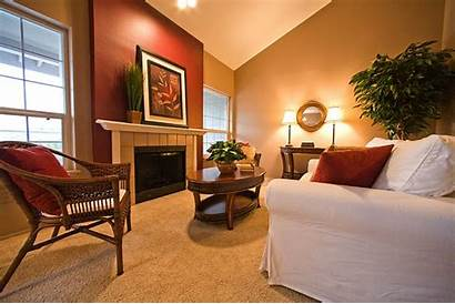 Living Wall Burgundy Colors Accent Walls Accents