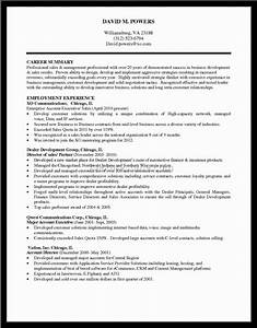 What is profile summary in resume resume ideas for Customer service resume profile
