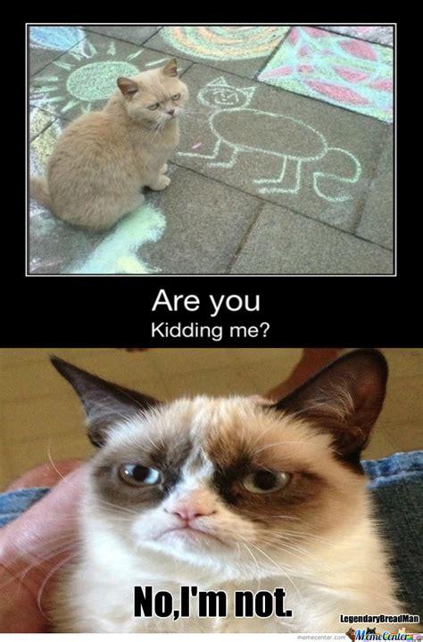Grumpy Cat Meets Grumpy Cat 2 By Legendarybreadman Meme