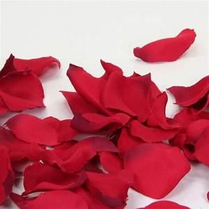 Glanzmispel Rote Blätter Fallen Ab : bl tenbl tter rot 100 st ck ~ Lizthompson.info Haus und Dekorationen