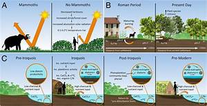 Ecological consequences of human niche construction ...