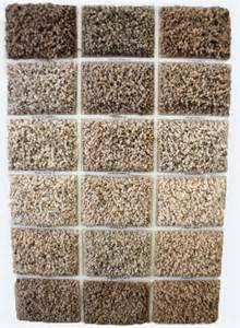 Best Colour Carpet by Shaw Carpet Pheonix Shaw Carpet Colors Scottsdale Plush