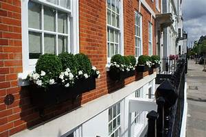 Window, Boxes, London