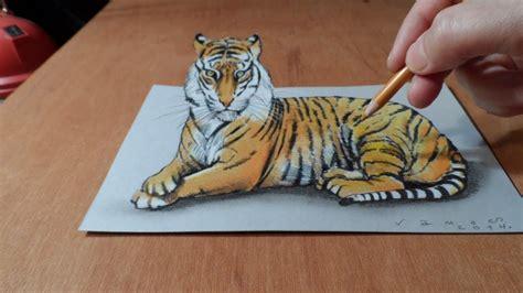 trick art   draw   tiger time lapse