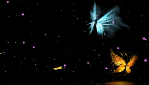 Animated Butterfly Wallpaper Free - free animated butterfly wallpaper wallpaper animated