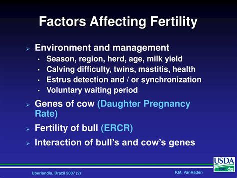 Ppt Selection For Fertility In Dairy Cattle Powerpoint