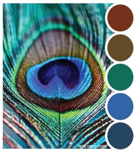 peacock wedding love beautiful 2068028 weddbook