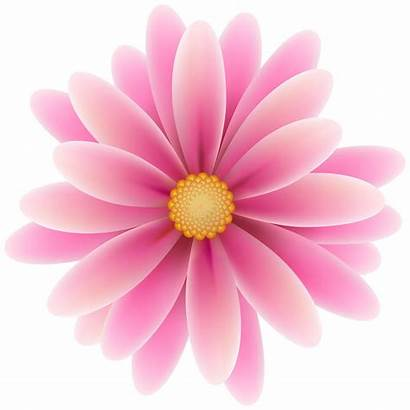 Flower Pink Clipart Clip Flowers Camping Blossom