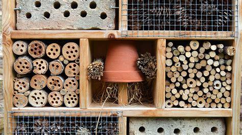 build  bug hotel    hibernation habitat