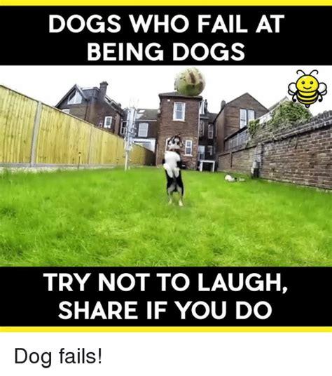 Fail Memes 25 Best Memes About Fails Fails Memes