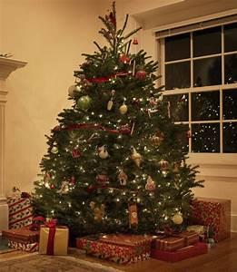 Weihnachtsbaum Geschmückt Modern : weihnachtsbaum hamburg schm ckt ihren tannenbaum mit weihnachtsbaumschmuck weihnachtsbaum hamburg ~ A.2002-acura-tl-radio.info Haus und Dekorationen