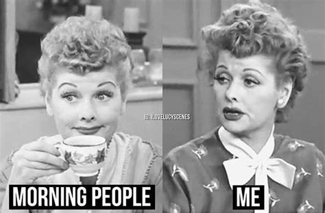 I Love Lucy Memes - 1000 images about i love lucy memes on pinterest your brain mondays and say what