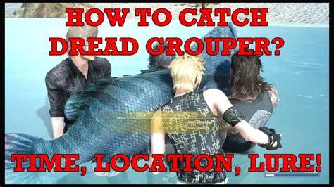 grouper catch