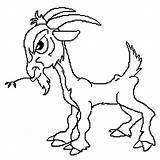 Desenhos Colorir Bode Coloring Billy Cabras Cabra Goat Imagens Imprimir Troll Desenho Pintar Tocolor Uma Goats sketch template