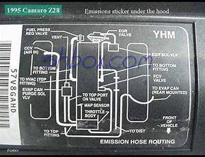 Vacuum Line Diagram And Routing