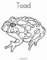 Toad Coloring Pages Printable Tadpole Drawing Horned Brown Outline Template Getdrawings Sketch Built California Usa Templates Twistynoodle sketch template