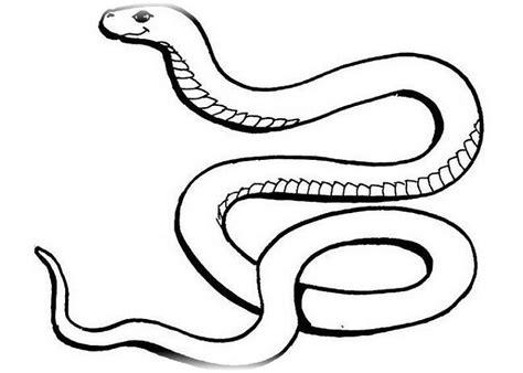 Schlange Ausmalbilder Zum Drucken