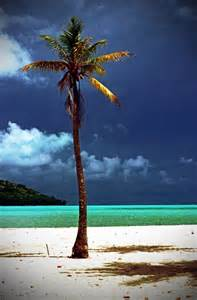 Amazing Bora Bora