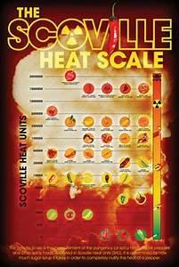 Scoville Pepper Heat Scale Poster 24x36 Chart List