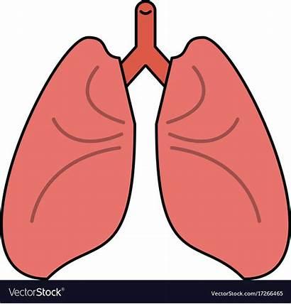 Lungs Cartoon Vector Icon Clip Royalty Clipground