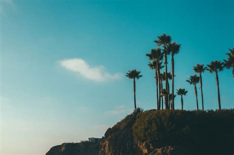 photoset photography summer hipster indie paradise canon