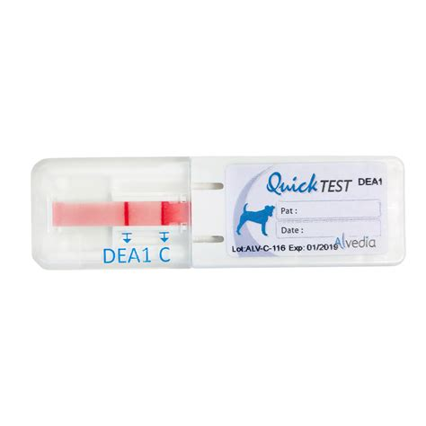 Quick Test Canine Alvedia