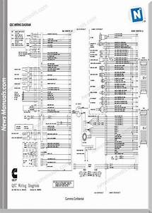 Cummins Qsb Qsc Qsm11 Wiring Diagram