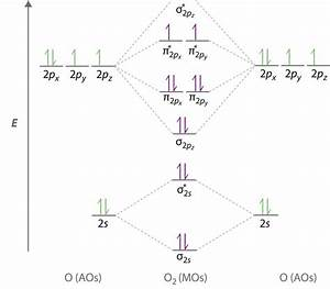 9 10  Molecular Orbital Theory Predicts That Molecular