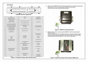 Haltech Platinum Pro Plug
