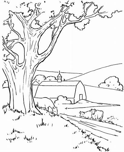 Coloring Farm Pages Scene