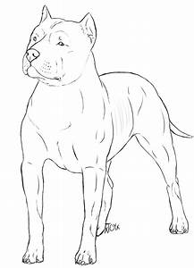 Free Pitbull Lines by xTrippingOnYoux on DeviantArt