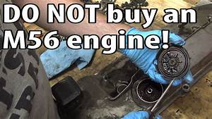 Don U0026 39 T Buy An E46 Bmw With An M56 Engine