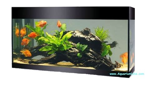 askoll black kit xl led aquarium line aquarium store