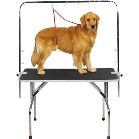 grooming table for sale dog grooming table for sale