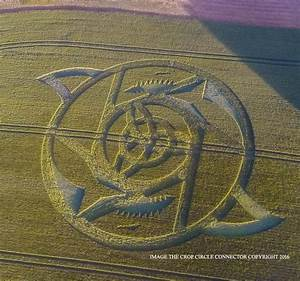 Crop Circle at The Ridgeway, nr Hackpen Hill, Wiltshire ...