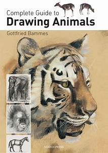 Complete Guide To Drawing Animals  Gottfried Bammes