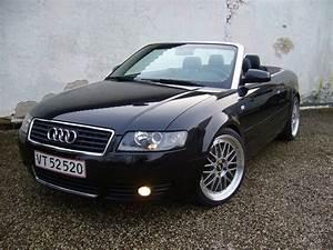 2004 Audi A4 Overview CarGurus