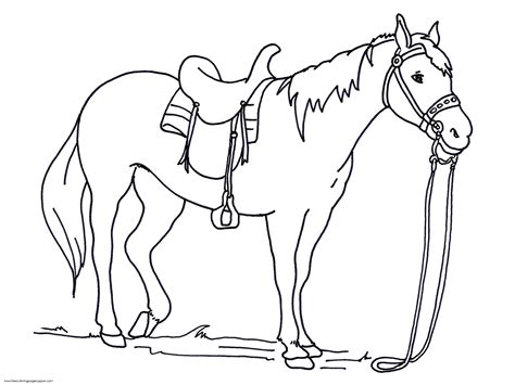 horse coloring pages printable  coloring pages