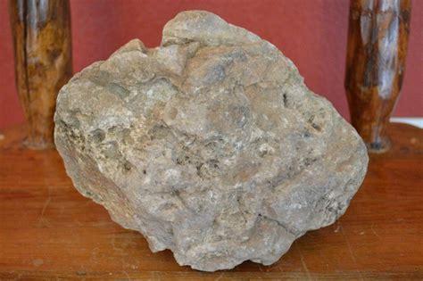 large aquarium rocks for sale classifieds