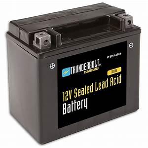 Batterie 12 Volts : 12 volt 10 ah sealed lead acid battery ~ Farleysfitness.com Idées de Décoration