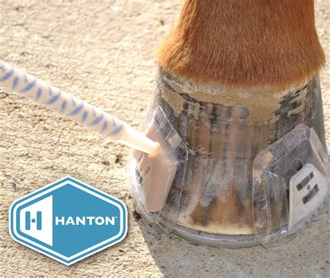 hanton horseshoes glue shoes hoof farrier repair supplies horse roundup adhesives meader farriers supply shoe problems easy fast solutions corp