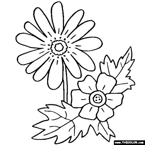 flower coloring pages color flowers  page