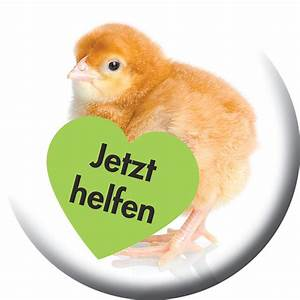 Hühnerhaltung Im Wohngebiet : gesetzliche vorgaben f r die h hnerhaltung im eigenen garten bauernhahn statt turbohuhn ~ Eleganceandgraceweddings.com Haus und Dekorationen