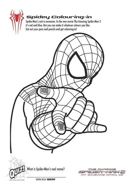 printable spiderman colouring pages  activity sheets   playroom