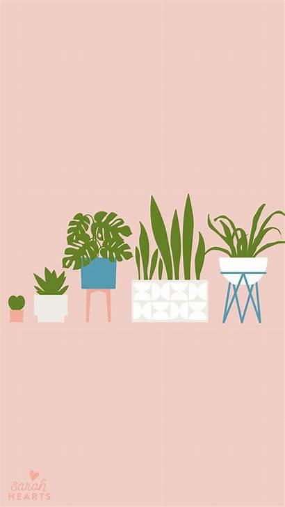 Wallpapers Iphone August Plant Plants Houseplant Calendar